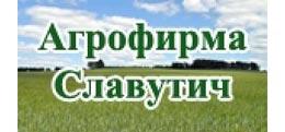 Агрофірма Славутич