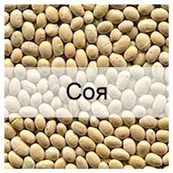 Стандартні зразки сої з відомими показниками якості