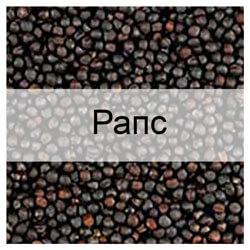 Стандартные образцы семян рапса с известными показателями качества