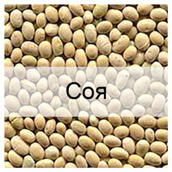 Стандартные образцы зерна сои с известными показателями качества
