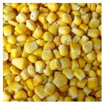 Кукуруза. Контрольный образец. CS.UA.11.001