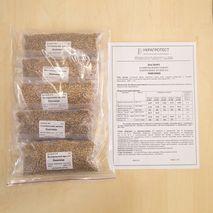 Набір з 7 контрольних зразків пшениці