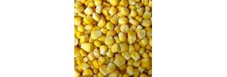 Начато производство контрольных (референтных) образцов зерновых, жмыхов, шротов.